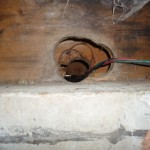 Packrat entry point located in crawlspace (1)