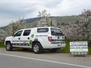 lake_country_pest_control